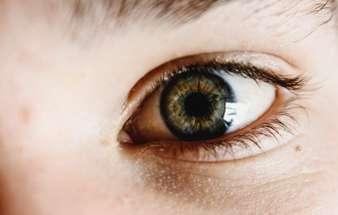 Blog iris