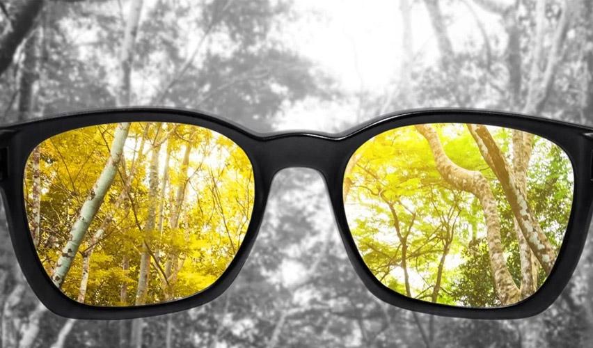 Ver la vida con daltonismo